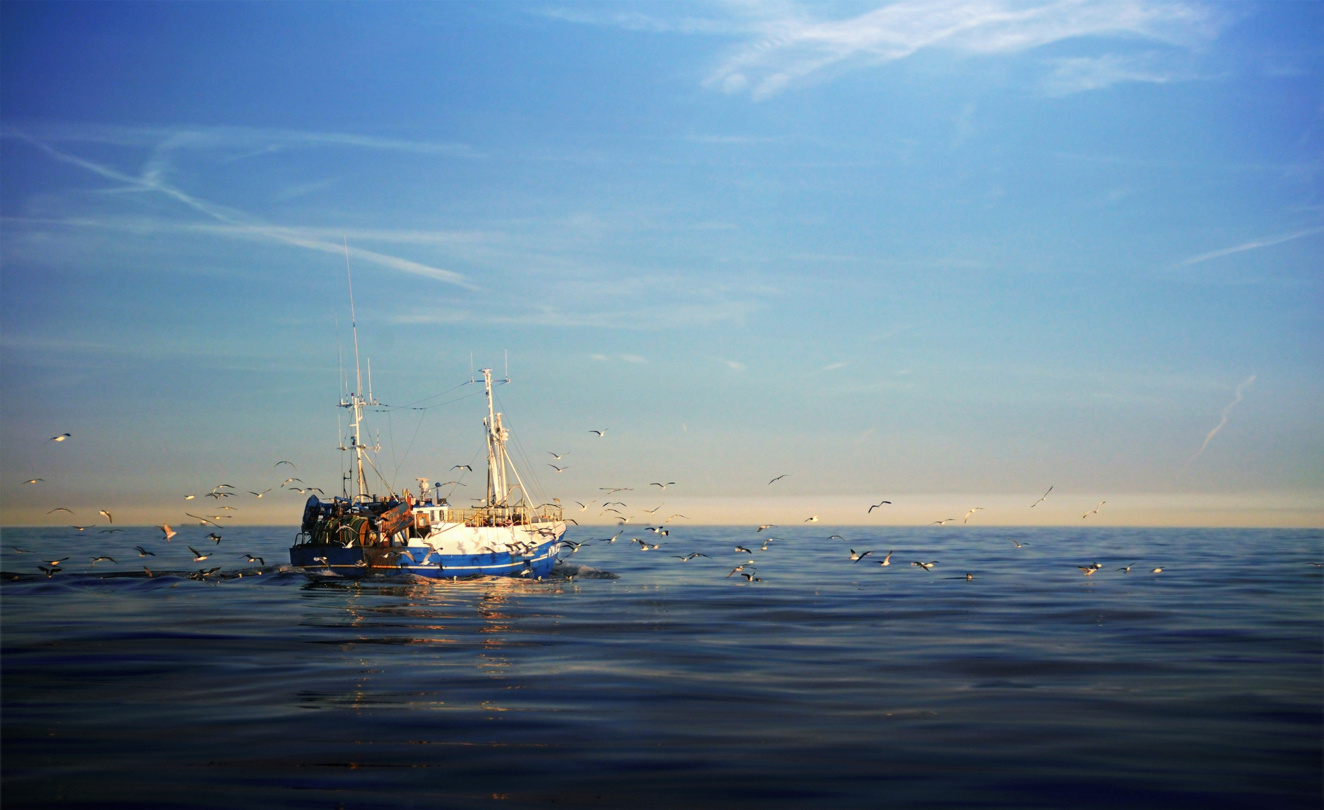 The EU's Betrayal of Britain's Fishing Industry